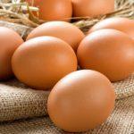 Pasta all'uovo artigianale fresca