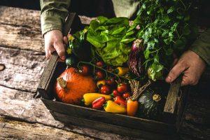 alimentazione-corretta-dietagift