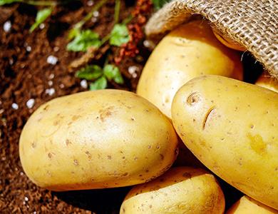 Gnocchi di patate con tomino - Ravioles della valvaraita